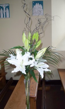 White lily and Phoenix palm
