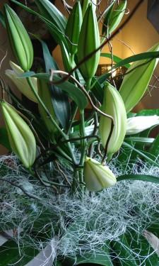 Oriental lilies, monstera leaves and sisal at Crug Glas