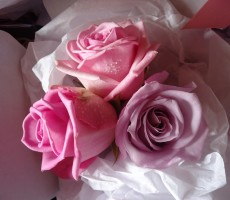 Pink and lilac rose bouquet