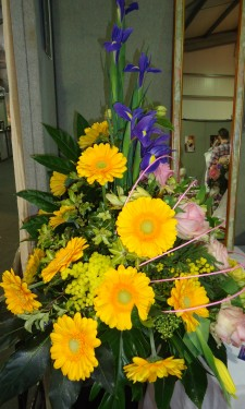 Yellow gerbera arranged with pink roses, blue iris and yellow mimosa