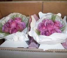 Aqua roses with fountain grass