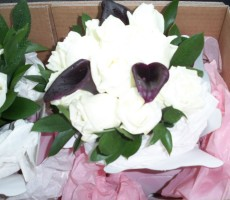 Dark Calla and ivory roses with hard ruscus
